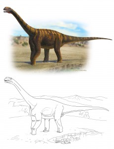 Abrosaurus dongpoi