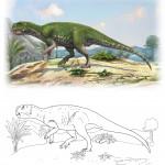 Psittacosaurus mongoliensis